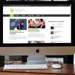rivista online (webzine)